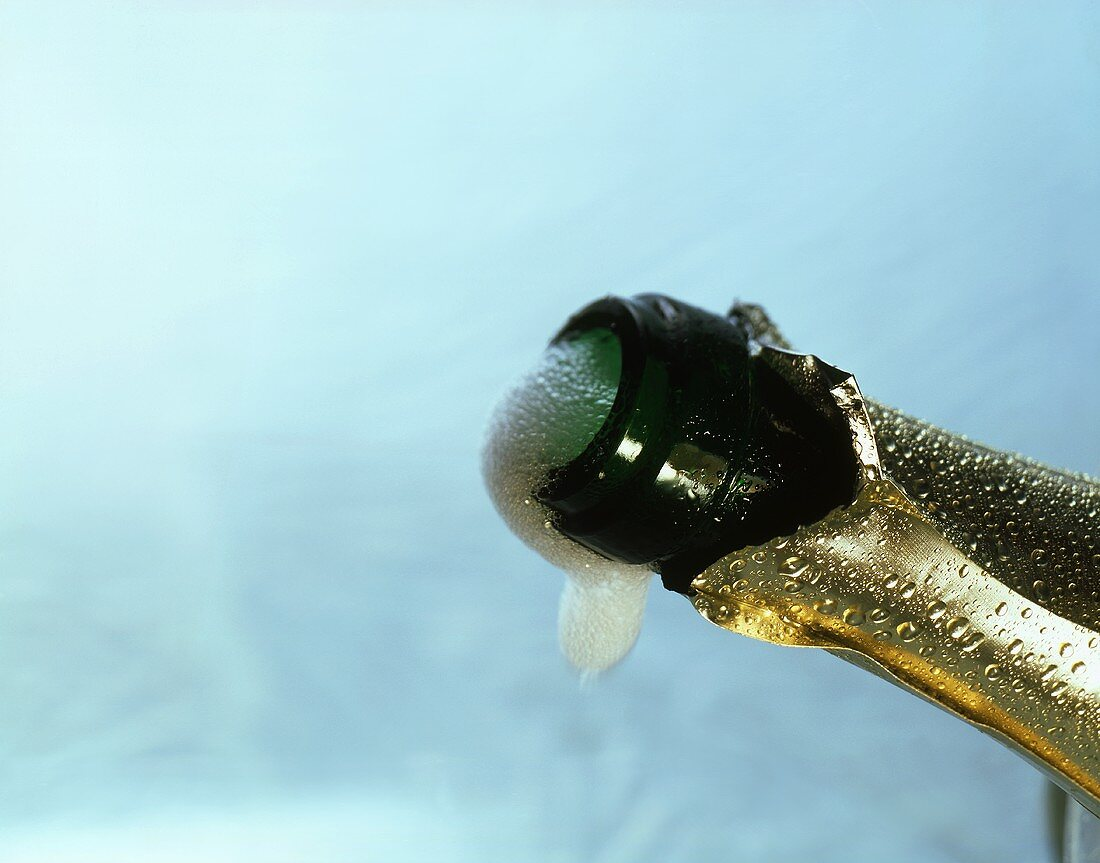 Froth shoots out of an opened sparkling wine bottle