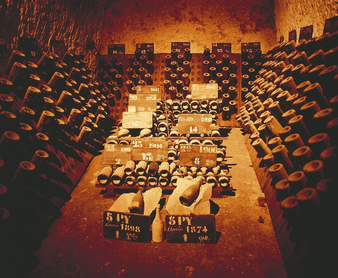 Champagne (1874-1970) in Pommery cellar, Reims