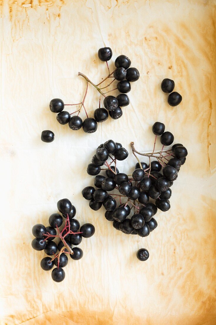Lots of aronia berries on used baking paper