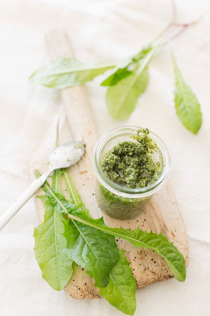 Home-made dandelion pesto in a glass jar with fresh dandelion leaves