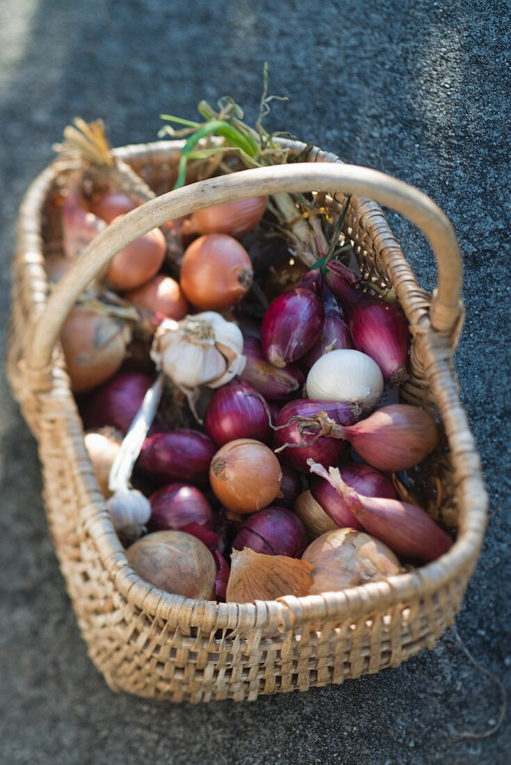 Onions and garlic in a basket