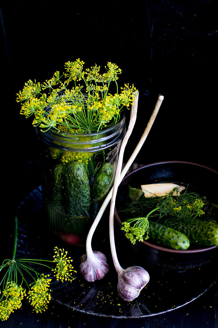Ingredients for pickled gherkins: gherkins, dill and garlic