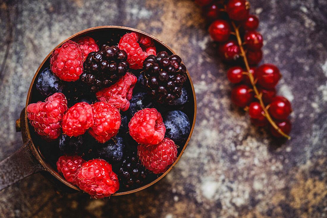 Organic raspberries, blueberries, blackberries and redcurrants in a bowl