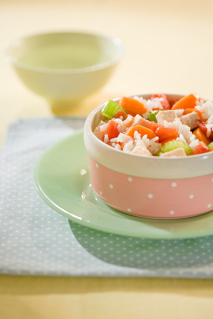 Dog food - rice with ham, tomatoes and celery