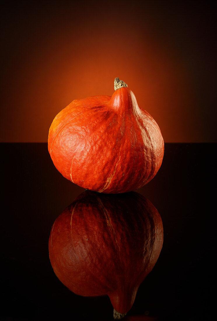 A Hokkaido pumpkin against a dark background