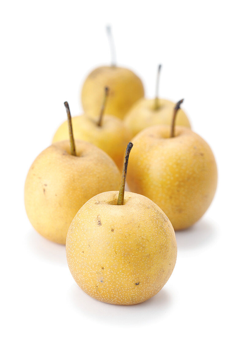 Nashi pears against a white surface