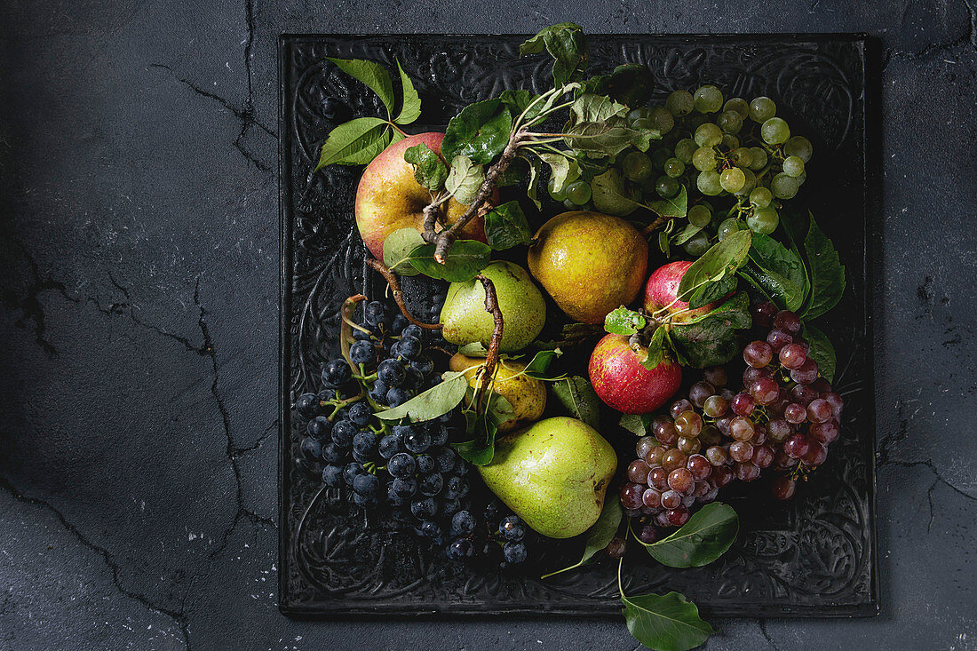 Variety of autumn fruits ripe organic apples, three kind of grapes, pears with leaves on metal ornate tray over dark texture background