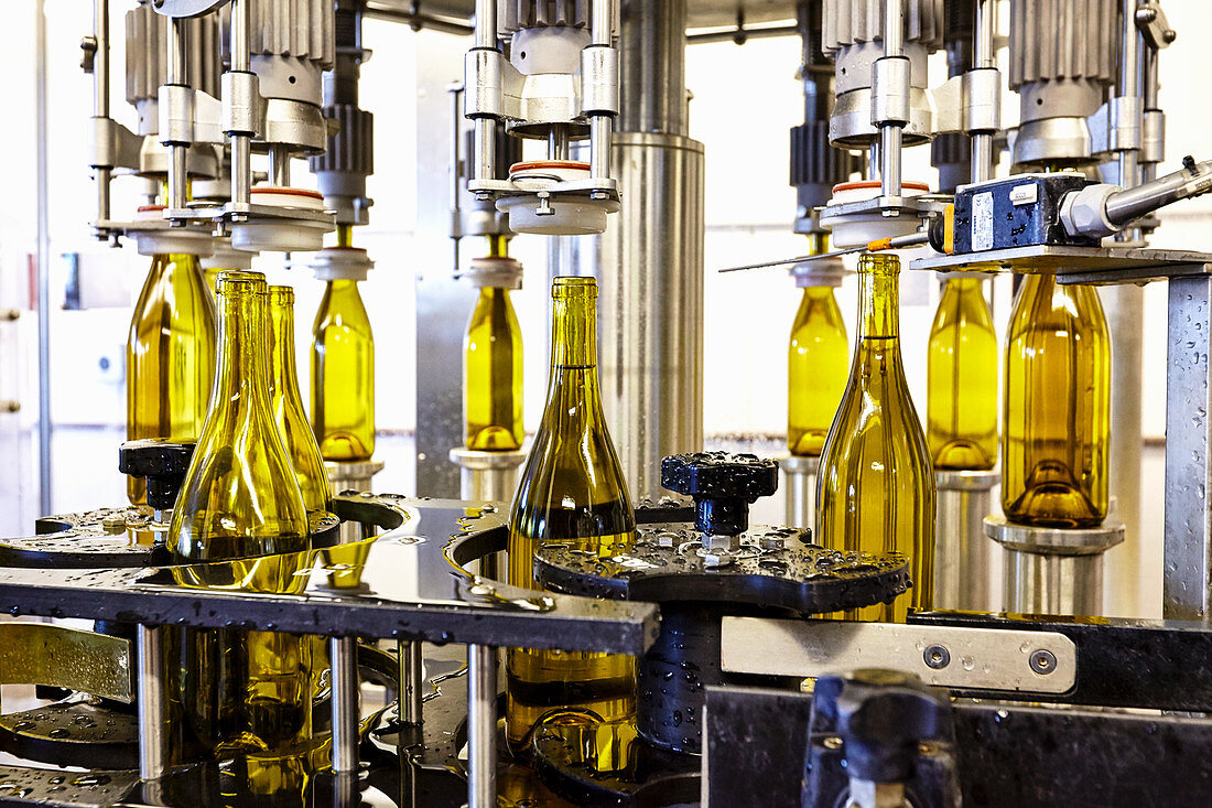 Wine Bottles in Bottling Plant at Marques de Riscal Winery in Rioja, Spain