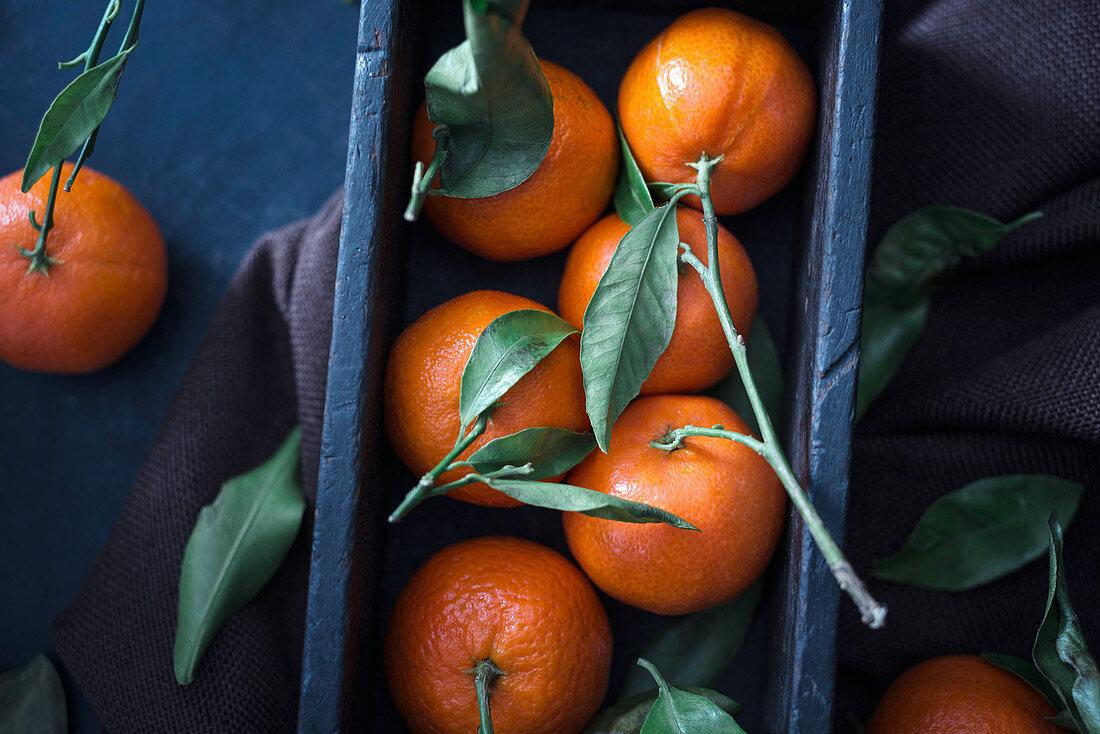 Fresh mandarins with leaves