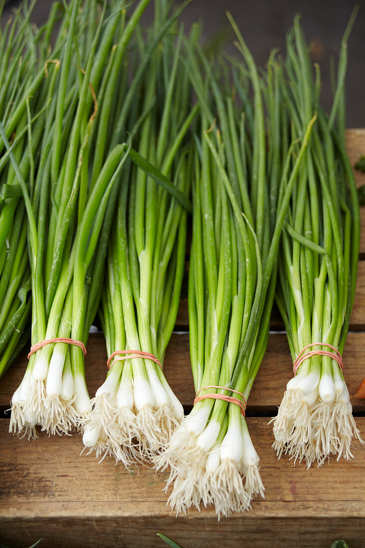 Bundles of spring onions, on a wooden crate