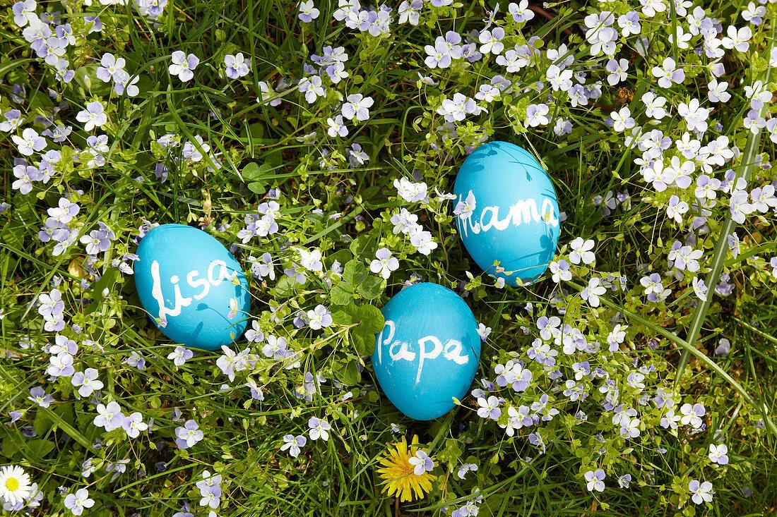 Blaue Eier mit Tafelfarbe bemalt und verschieden beschriftet auf Frühlingswiese liegend