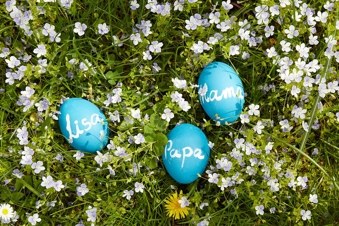 Blue eggs painted with chalkboard paint and labelled with different names lying on spring lawn