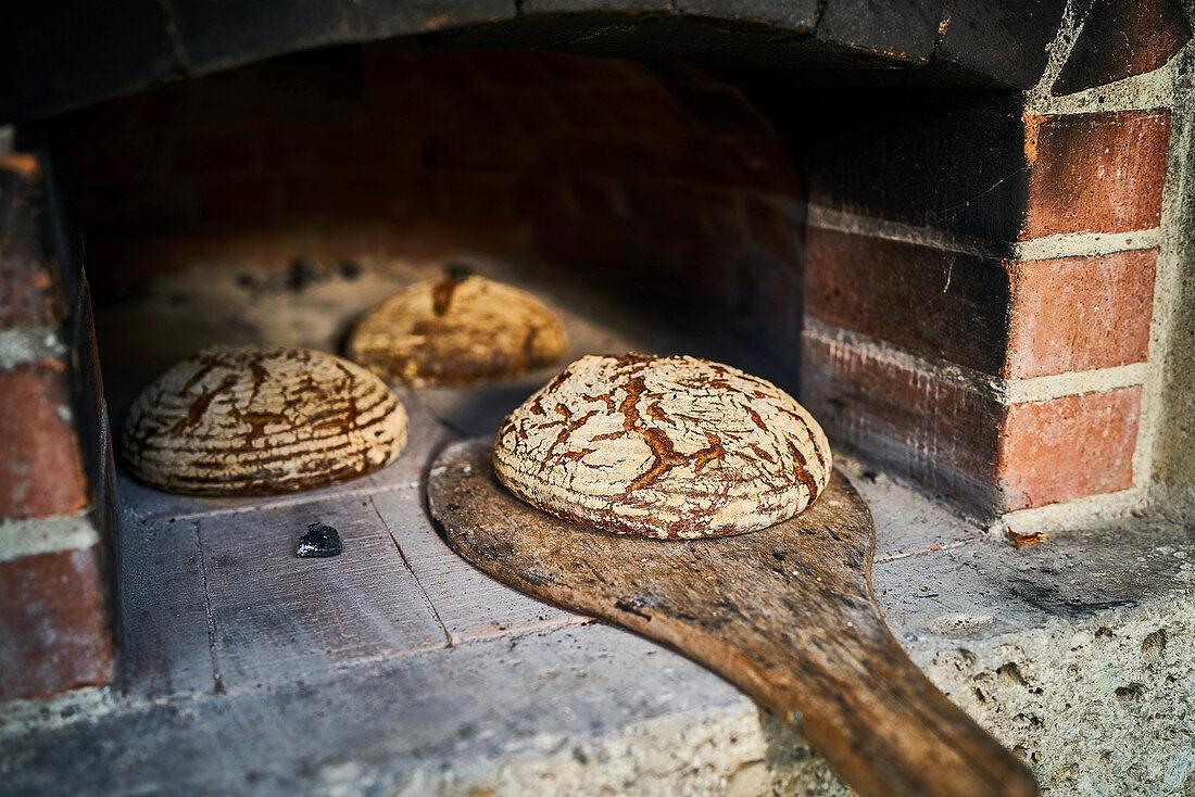 Crusty Fürstätt bread being taken from a wood-fired oven