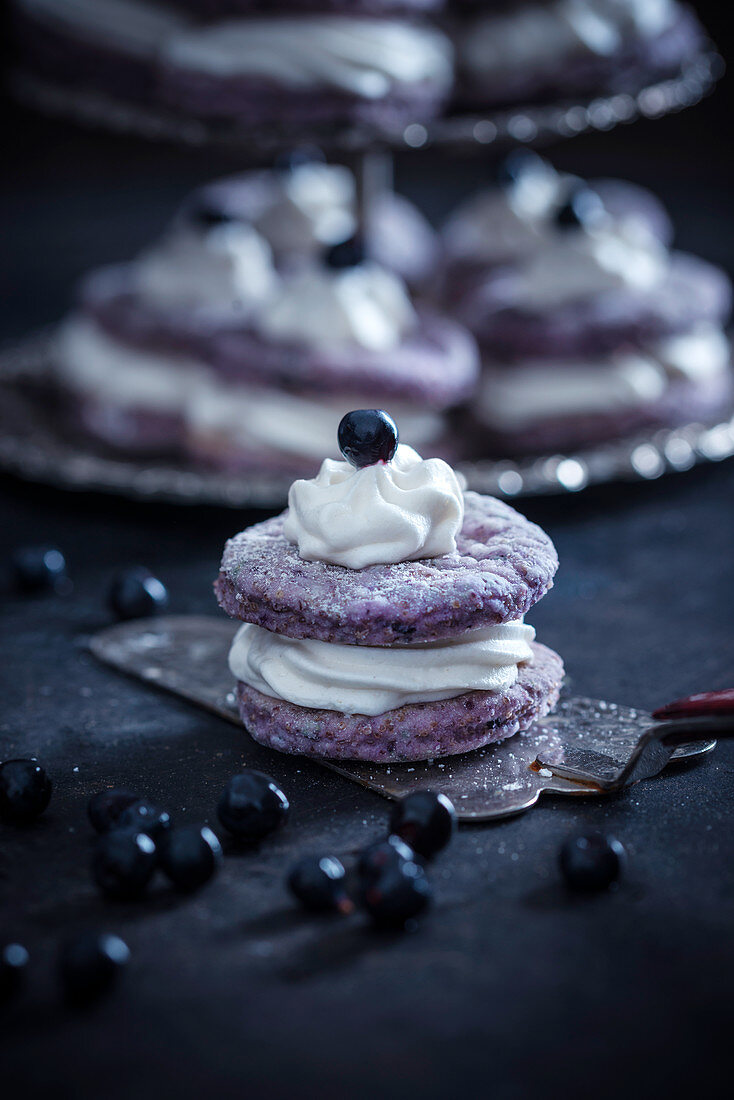 Vegan blueberry amaranth cakes filled with white rice milk and chocolate cream