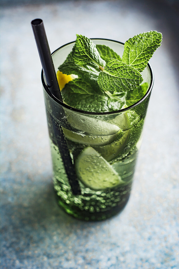 Sparkling water with lime, lemon and mint