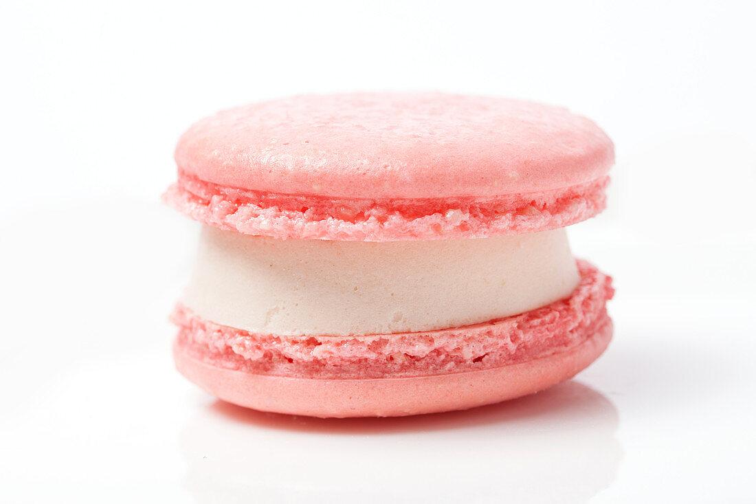 A pink macaron with white cream