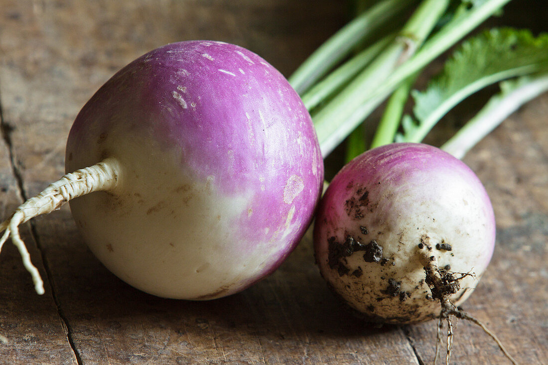 Two turnips on a wooden surface