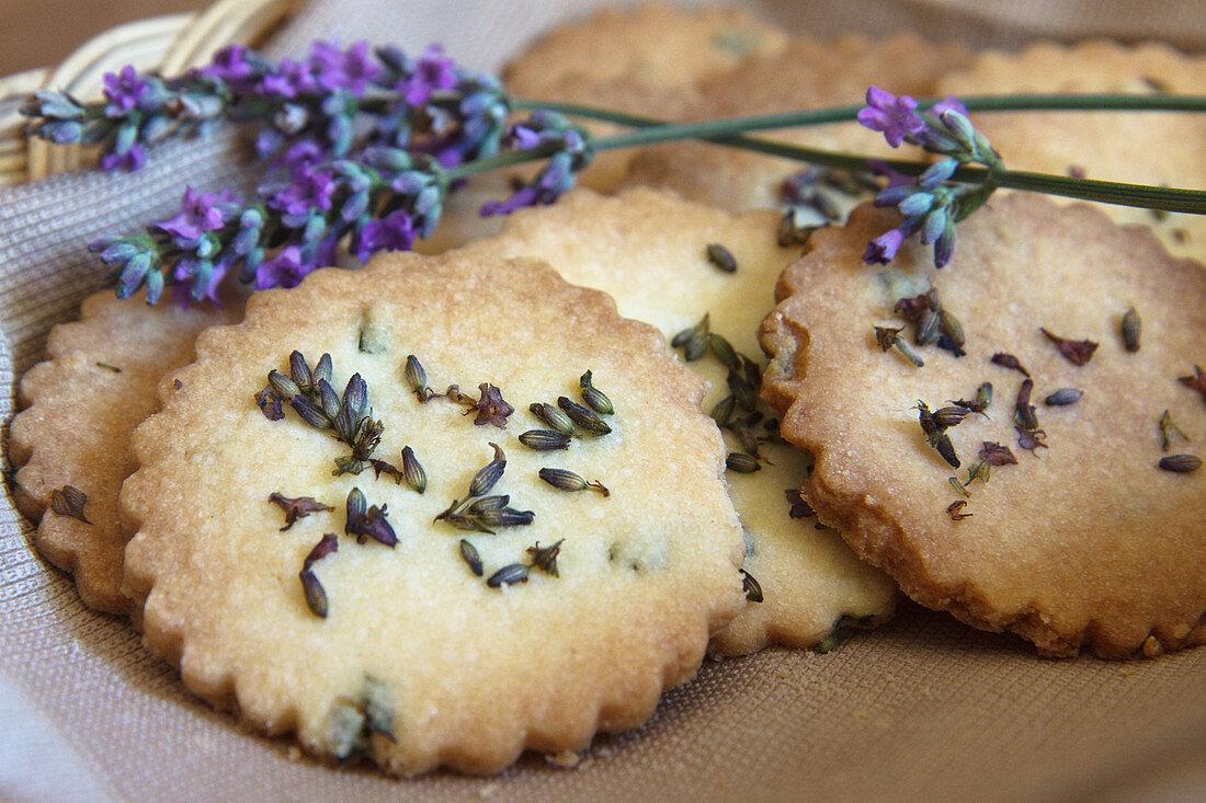 Lavender biscuits using English Lavender (Lavendula angustifolia)