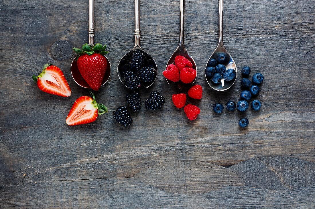 Erdbeeren, Brombeeren, Himbeeren und Heidelbeeren auf Löffeln