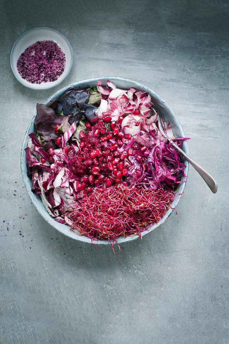 Salatmix aus Radichio, geraspelter Roter Bete, Rote-Bete-Sprossen, Granatapfelkernen, rotem Batavia, Rotkohl und lila Chicoree, Rote-Bete-Salz im Schälchen