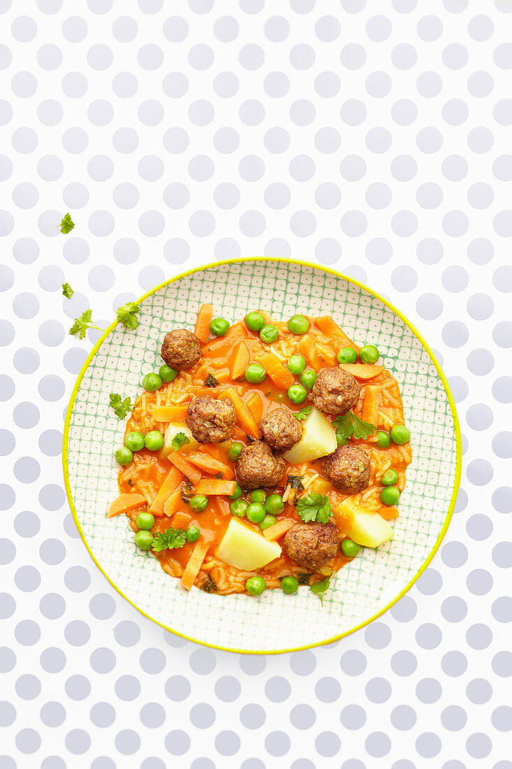 Meatballs with vegetable sauce and rice