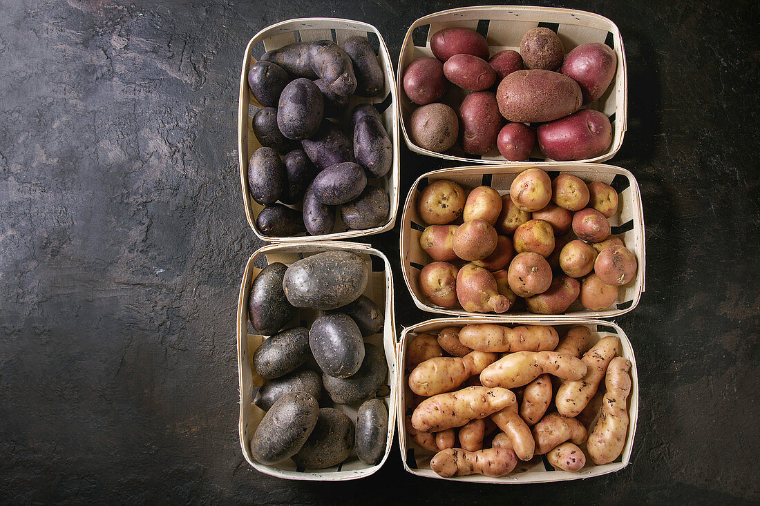 Variety of raw uncooked organic potatoes different kind and colors red, yellow, purple in market baskets
