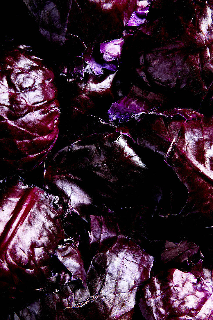 An arrangement of purple shades made from red cabbage leaves (full frame)