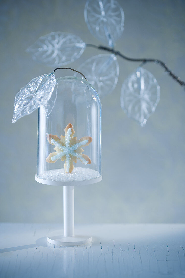 Snow Flake Cookie in Glass