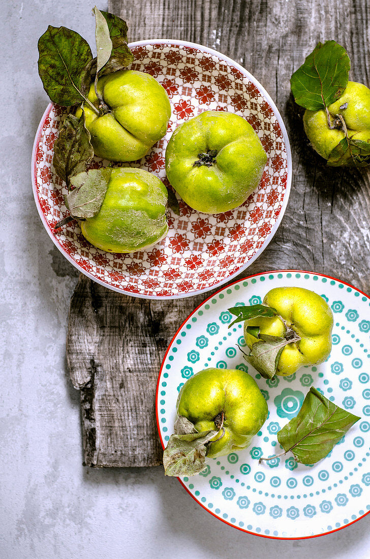 Quince plucked from a tree on colored plates