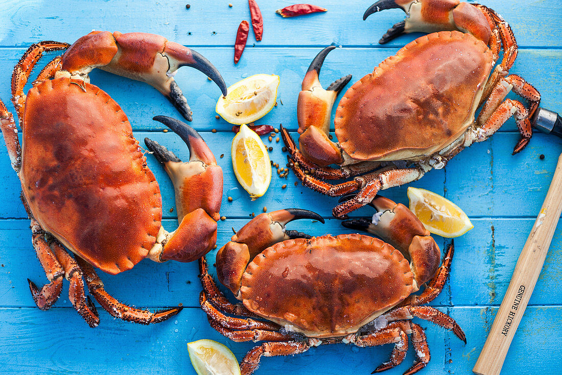 Three cooked crabs with lemons and chili peppers