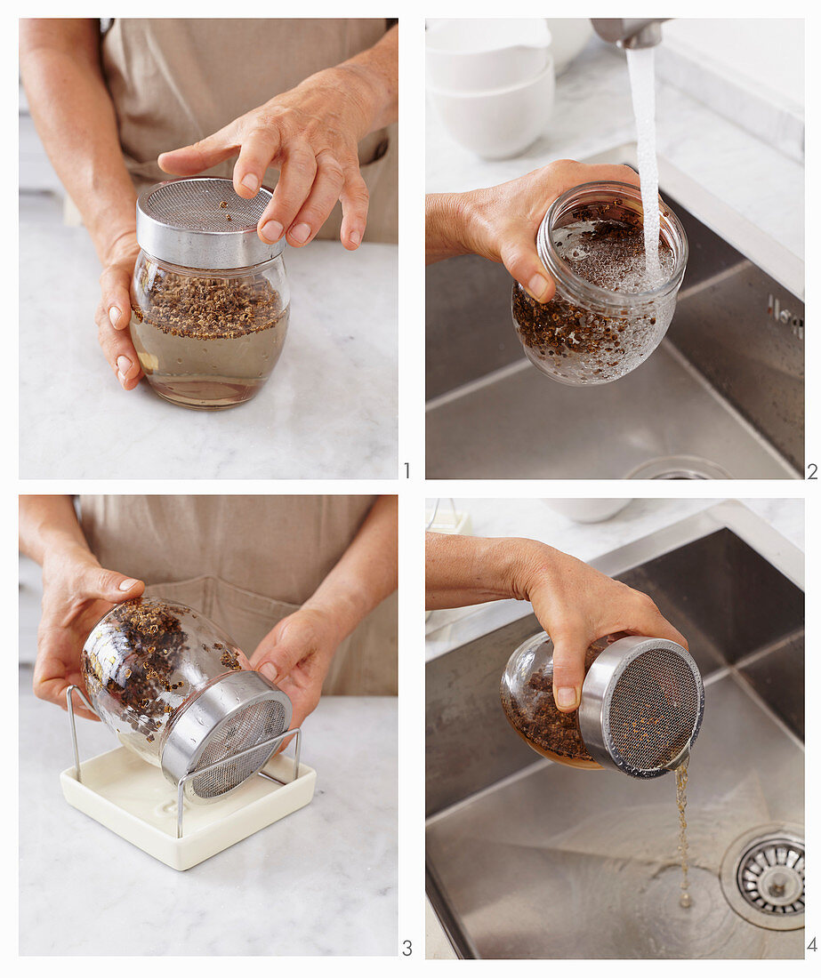 Beetroot seeds being place in a glass jar of water for germination
