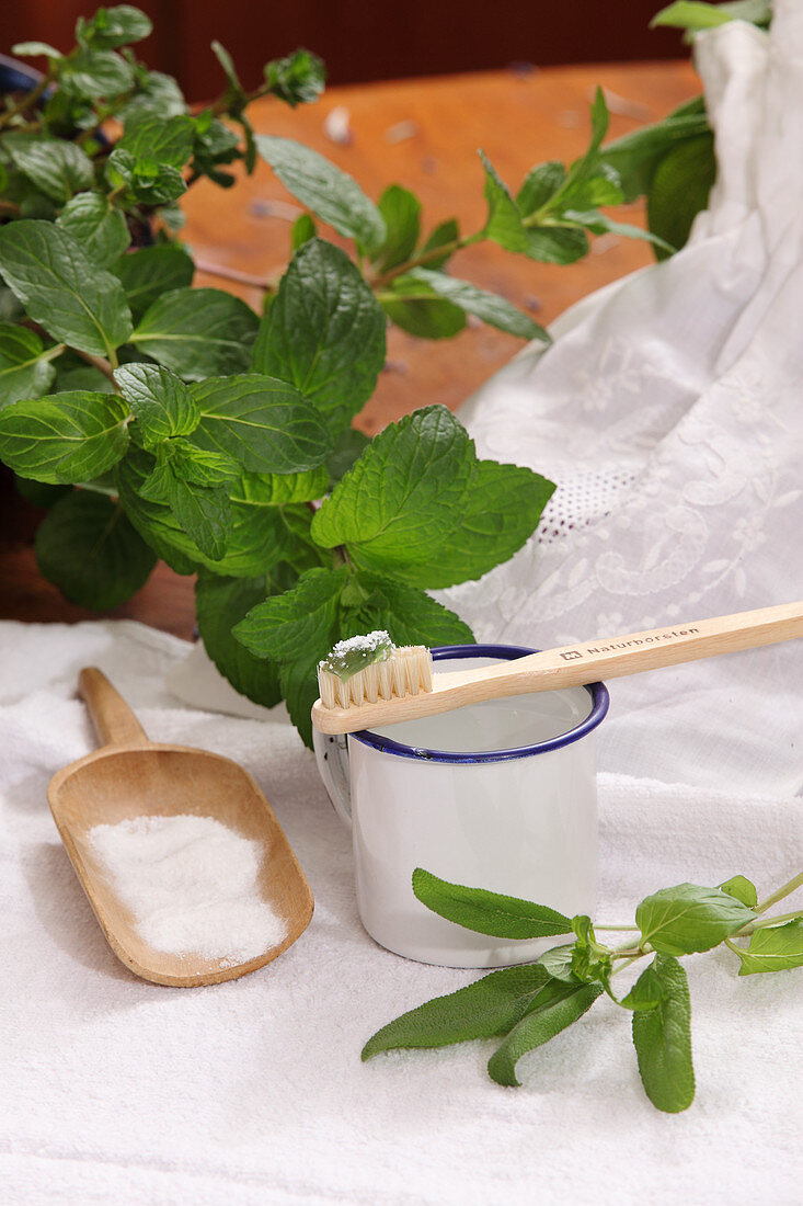 Herbal toothpaste with salt on a toothbrush