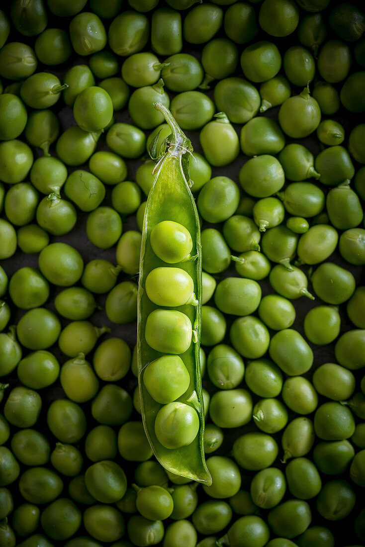 Open Green Peas pod on Green Peas