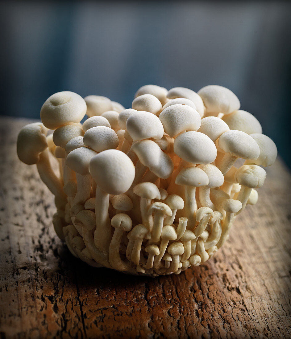 White enoki mushrooms