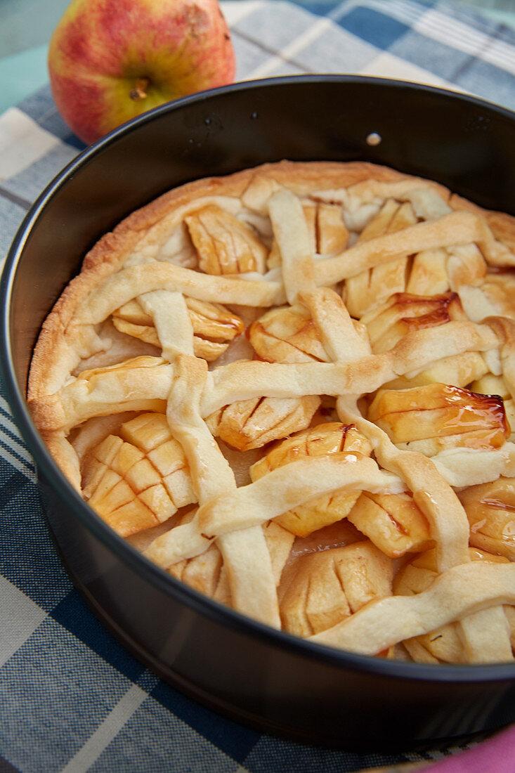 Apple cake in the baking tin