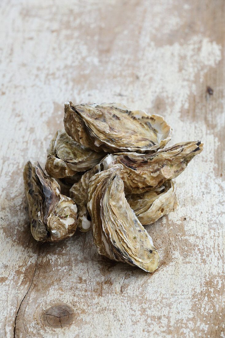 Fresh oysters on a wooden surface