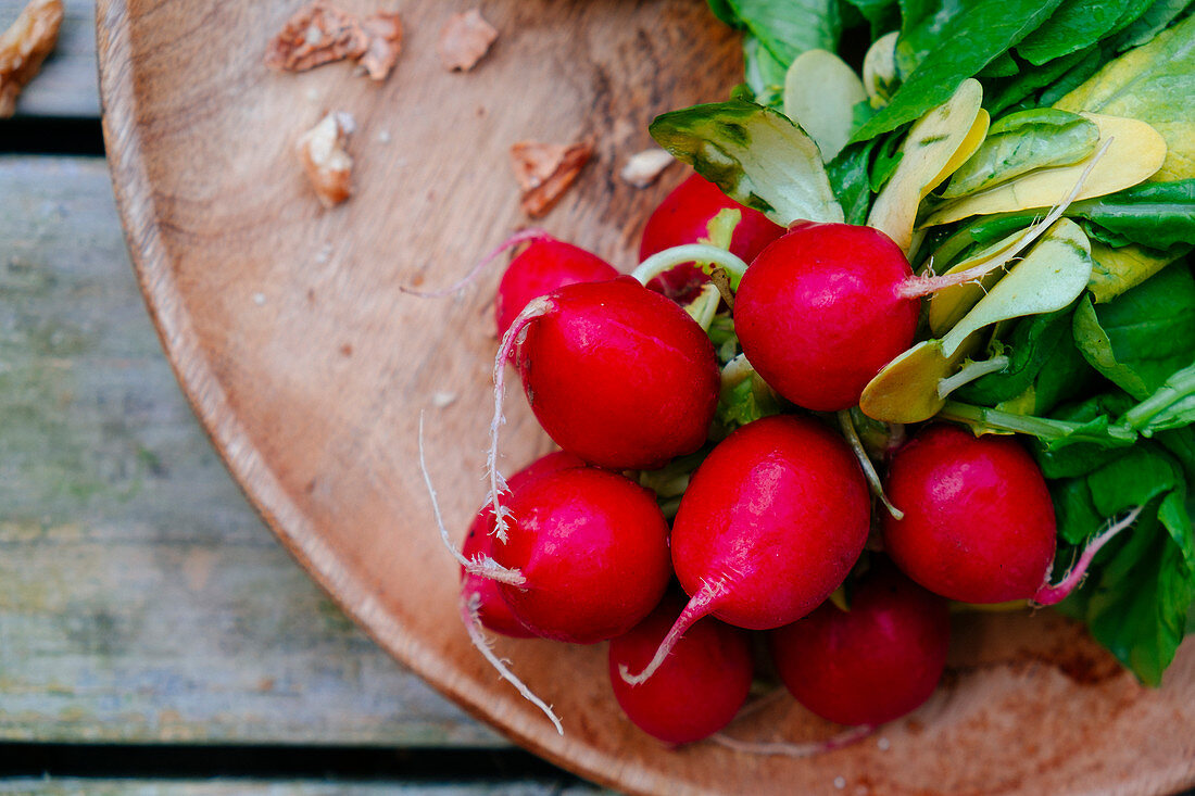 Radish on a wooden plate