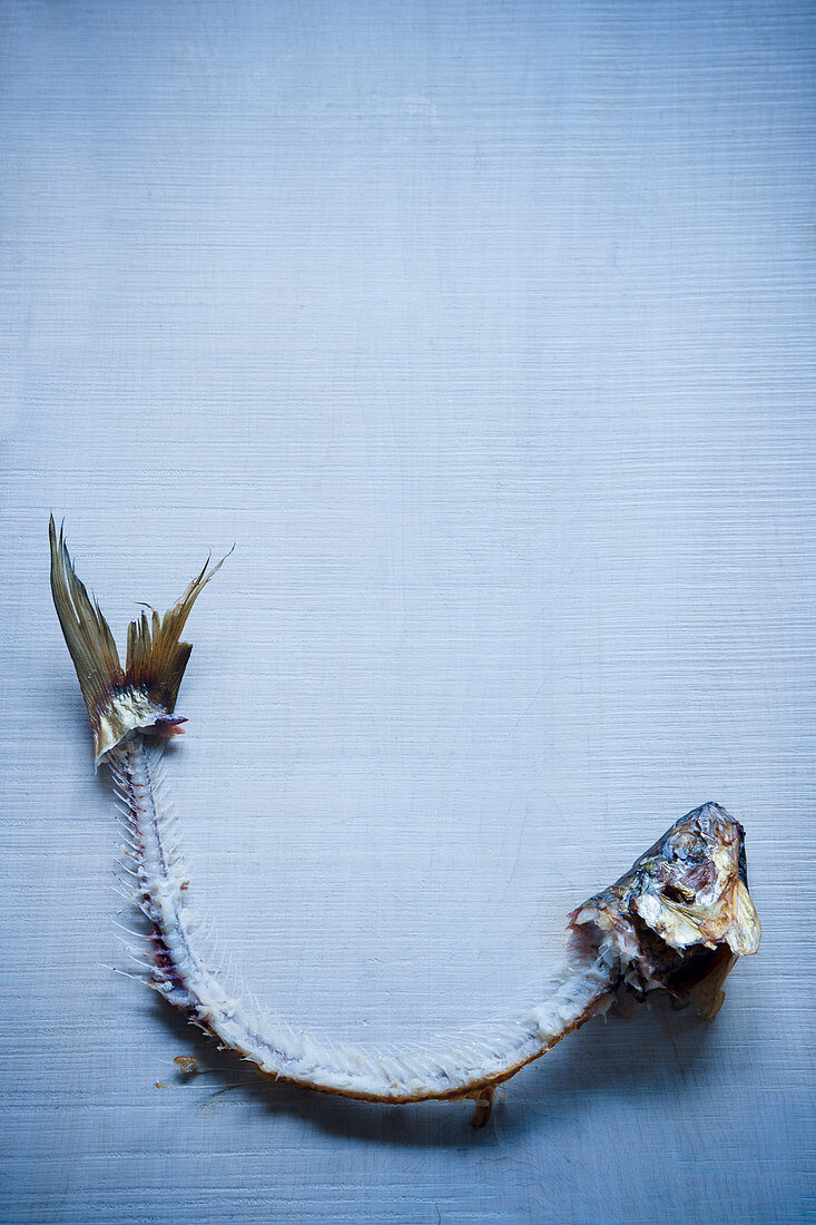 A smoked fish carcass
