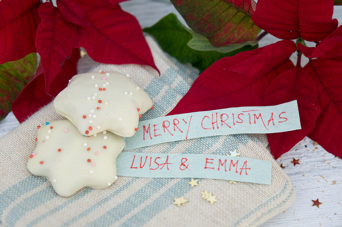 Gingerbread nuts and name tags with poinsettias