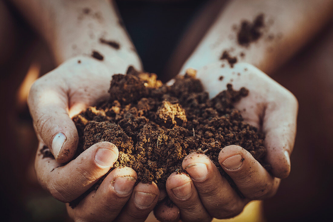 A person holding a handful of soil
