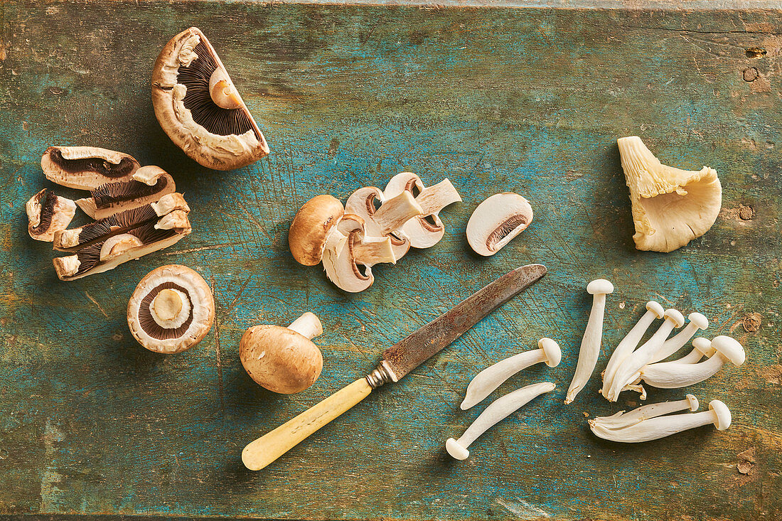 Still life of mushrooms, Chestnut Mushroom, Oyster mushroom, Portobello and Siitake