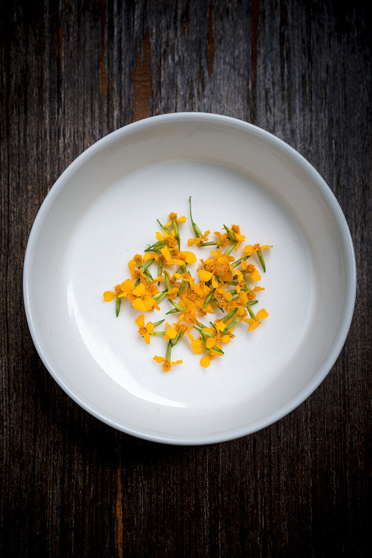 Anise Blossoms in a White Bowl