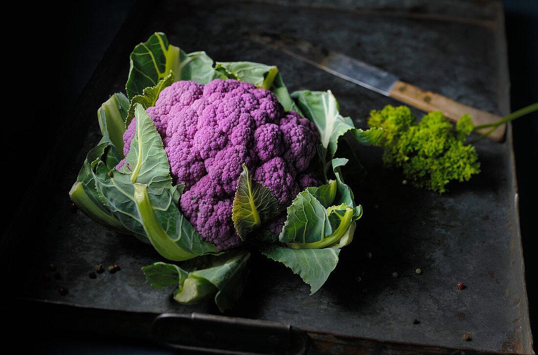 Violetter Blumenkohl auf Backblech mit Messer