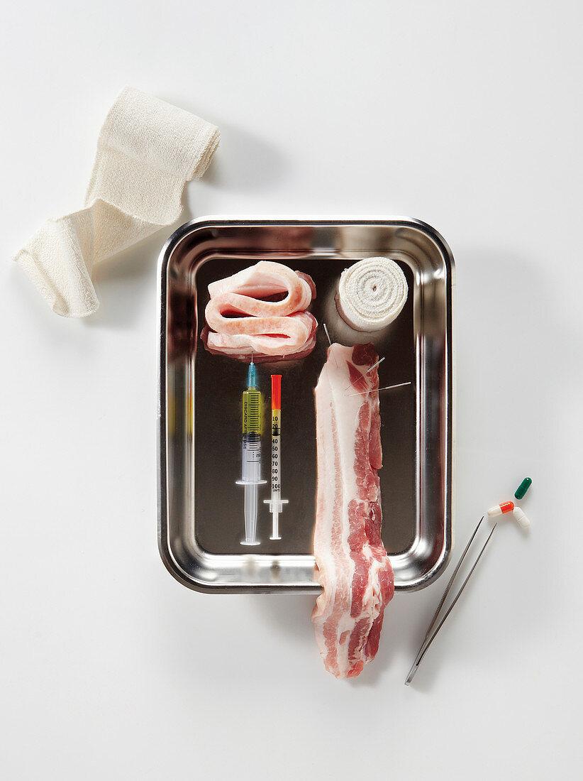 Schweinebauch mit Akupunkturnadeln, Spritzen, Verbände, Pinzette und Tabletten