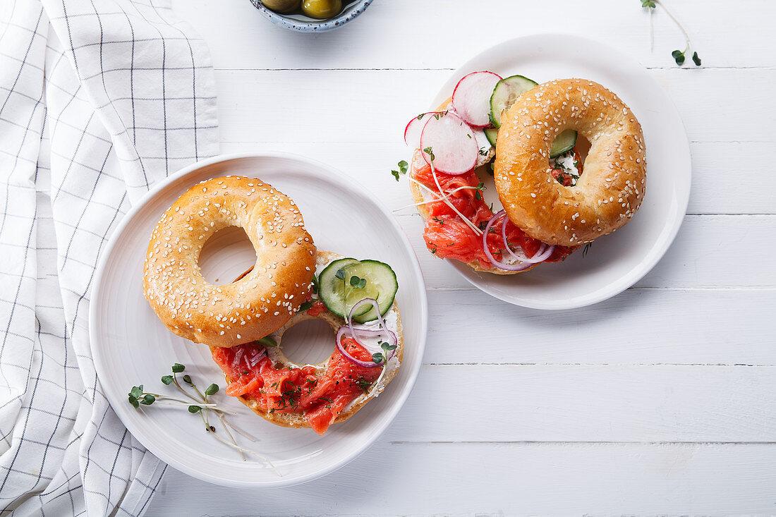 Bagel with salmon fish, cream cheese, cucumber and fresh radish slices