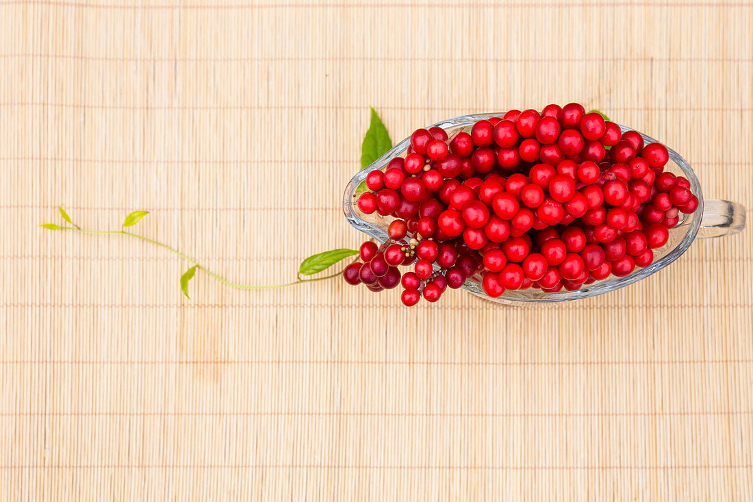 Fresh Schizandra berries in a glass gravy boat (seen from above)