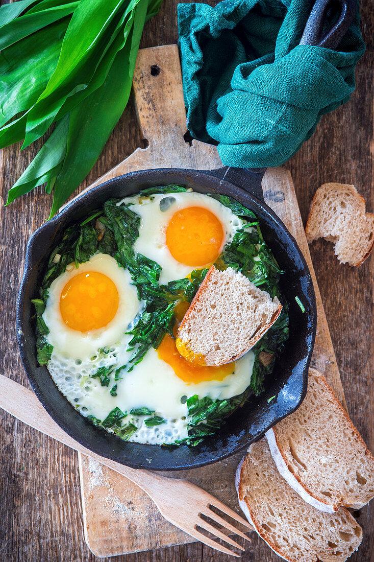 Fried eggs with wild garlic