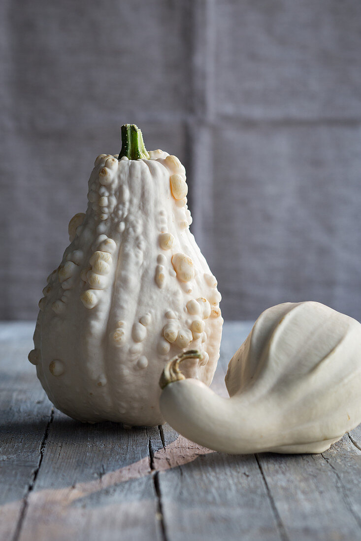 A pale warty squash and a bottle gourd