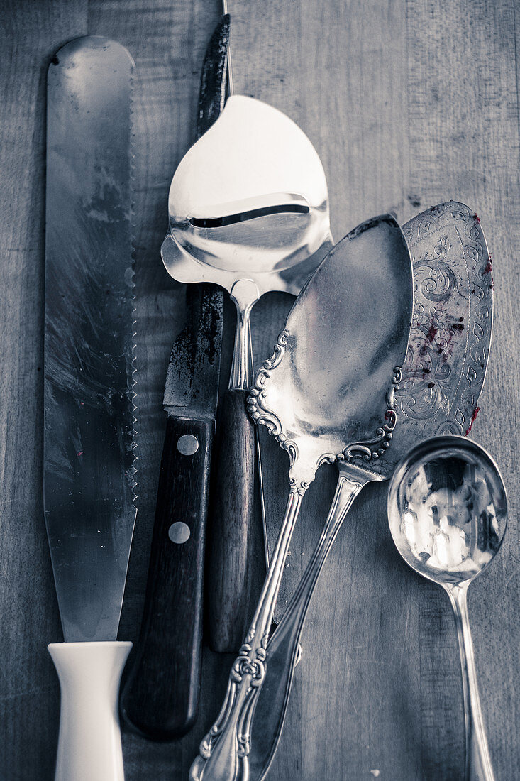 A silver cake slice, a cheese slicer, spoons and palette knives
