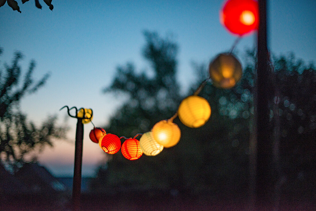 A string of lanterns as decoration for a garden party